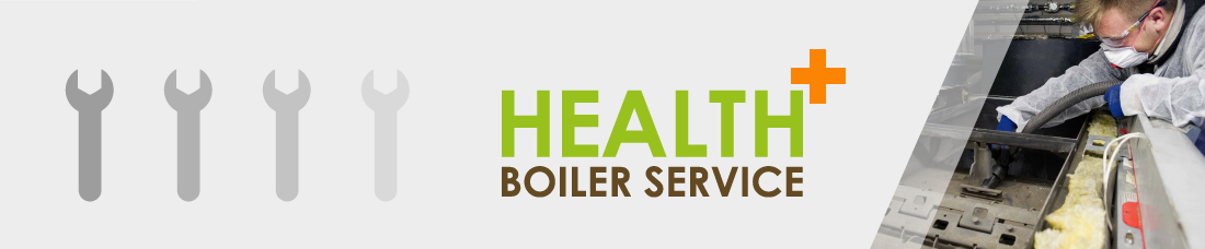 Health Plus Biomass Boiler Service maintenance breakdown